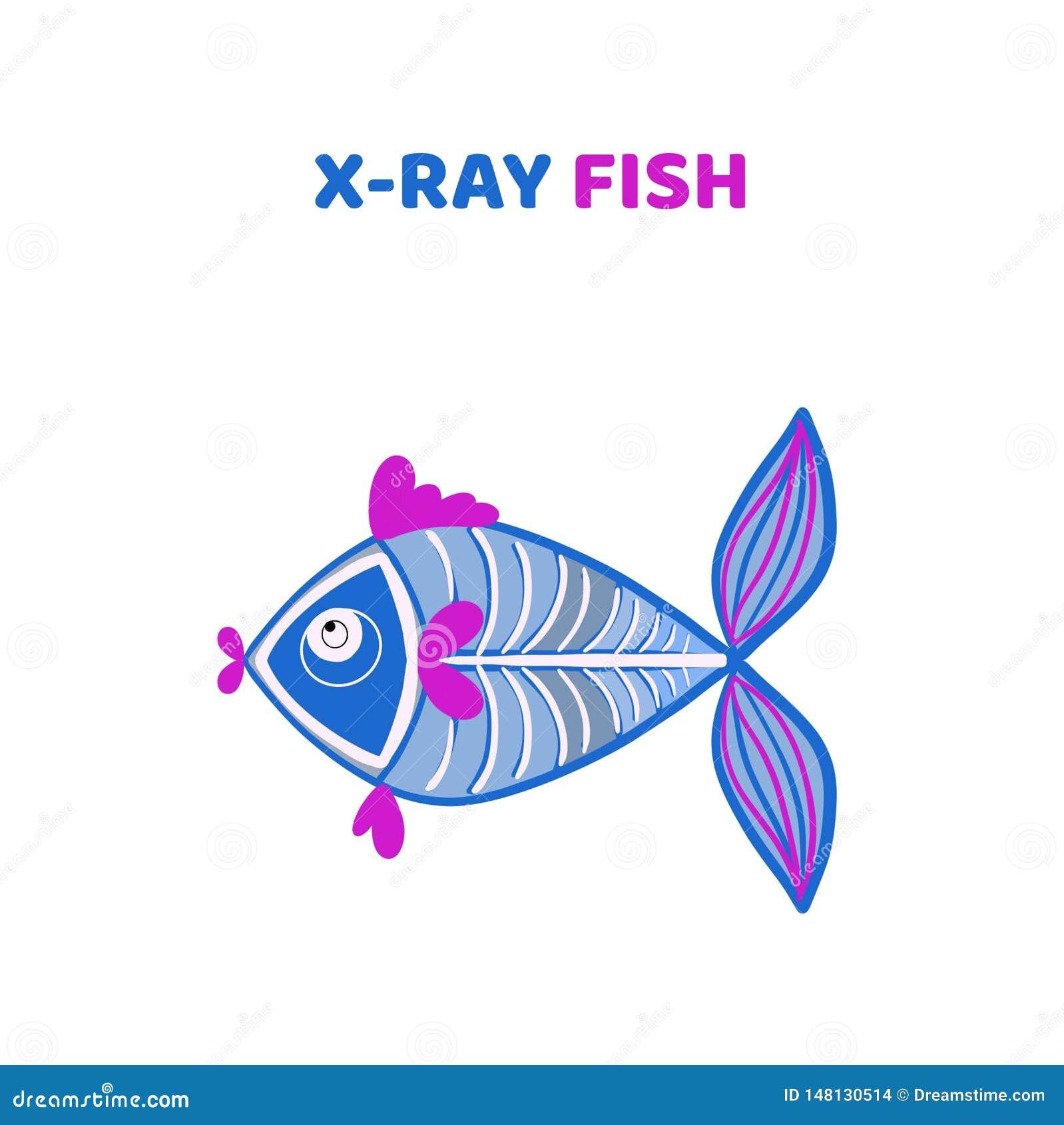Historieta un pescado lindo y divertido de la radiografía