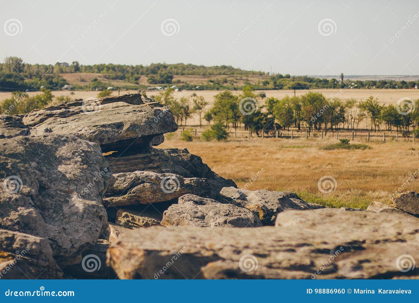 Historisch monument in de Steengraf van Zaporozhye de Oekraïne