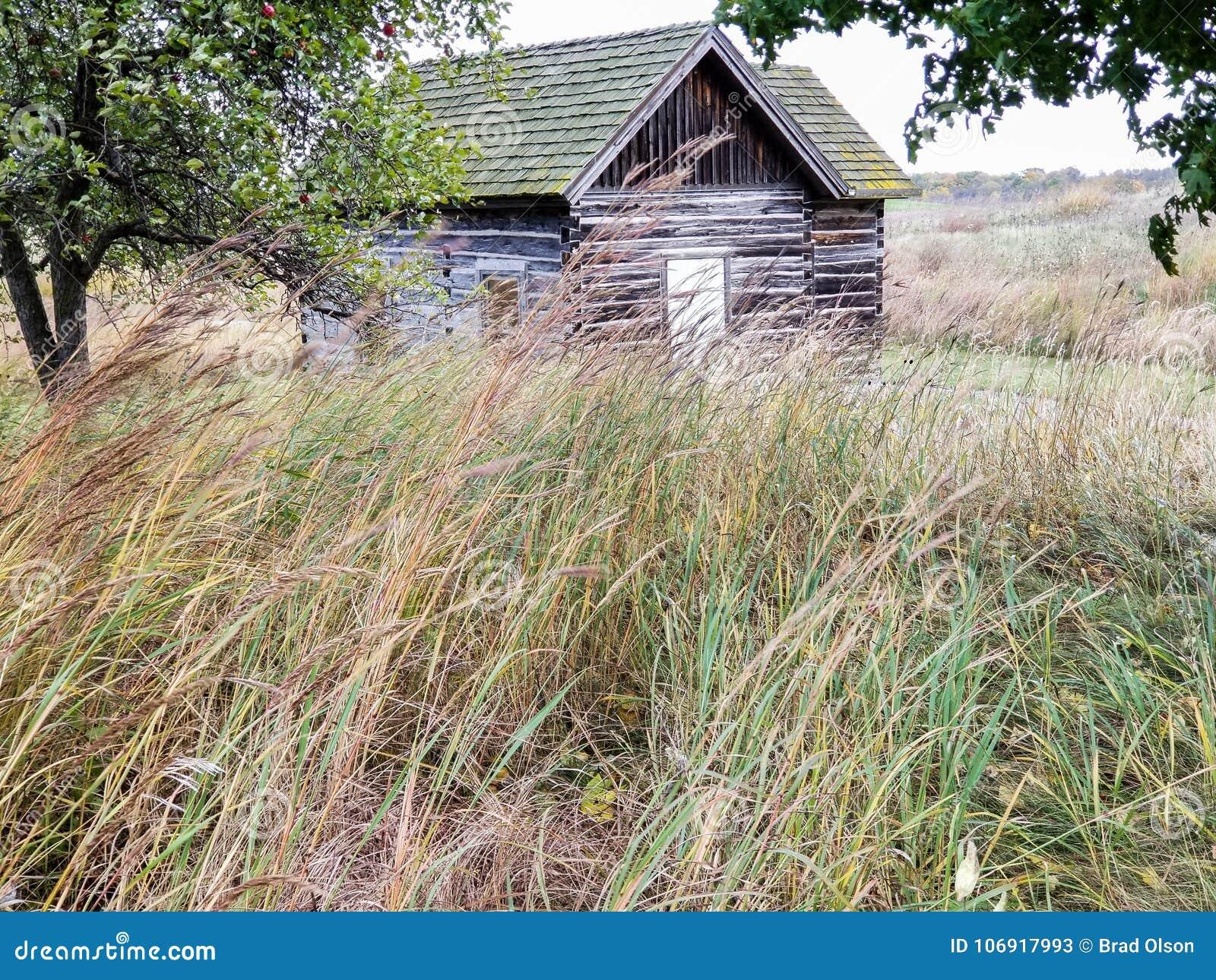 Historyczny stary dom wiejski z wietrzejącym drewnem w polu