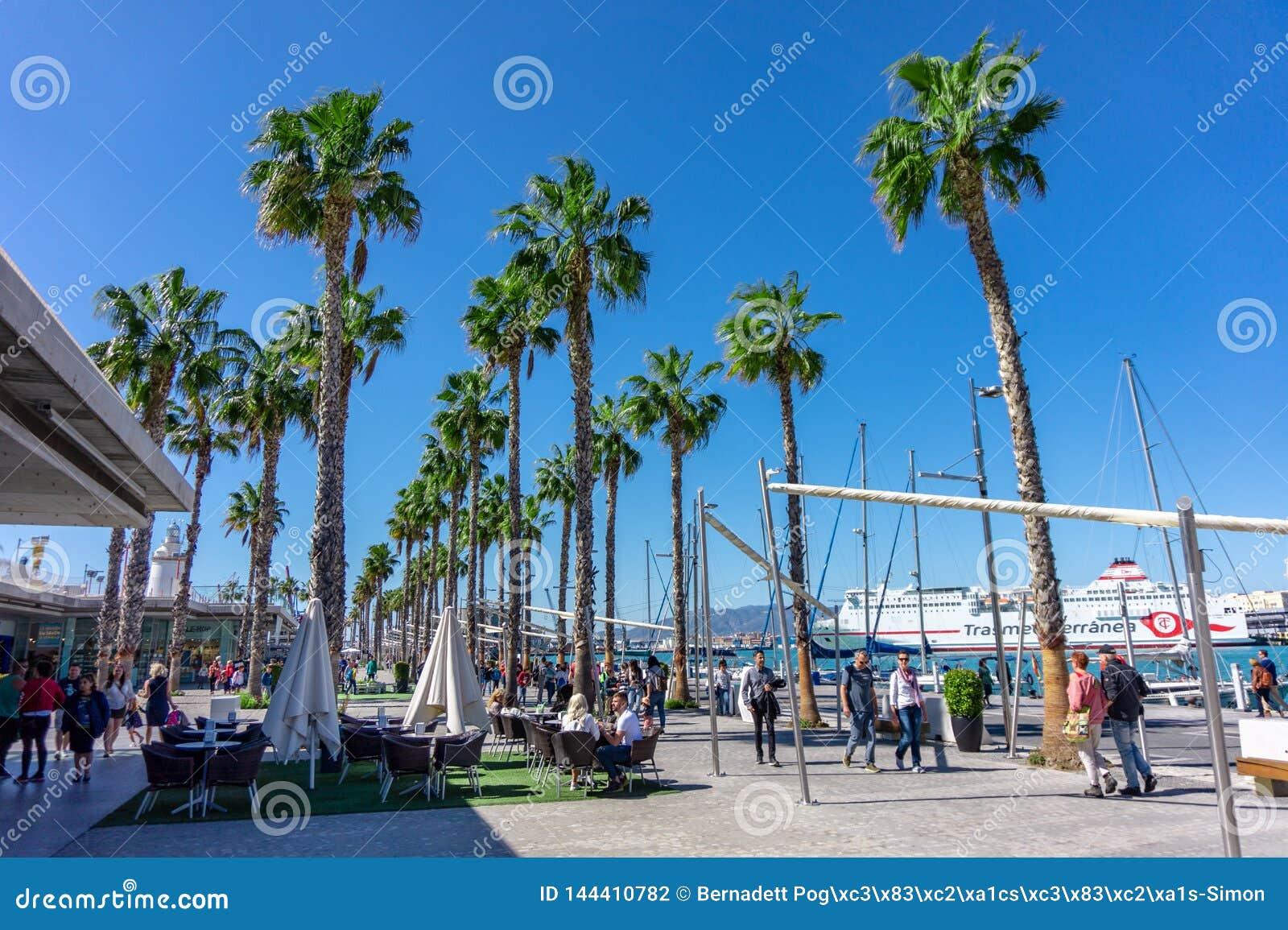 Hiszpania, Malaga - 04 04 2019: Portowy schronienie Malaga z jachtów ludźmi i drzewkami palmowymi