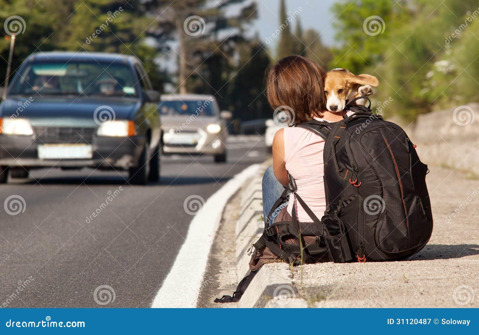 dog photo road - photo #47
