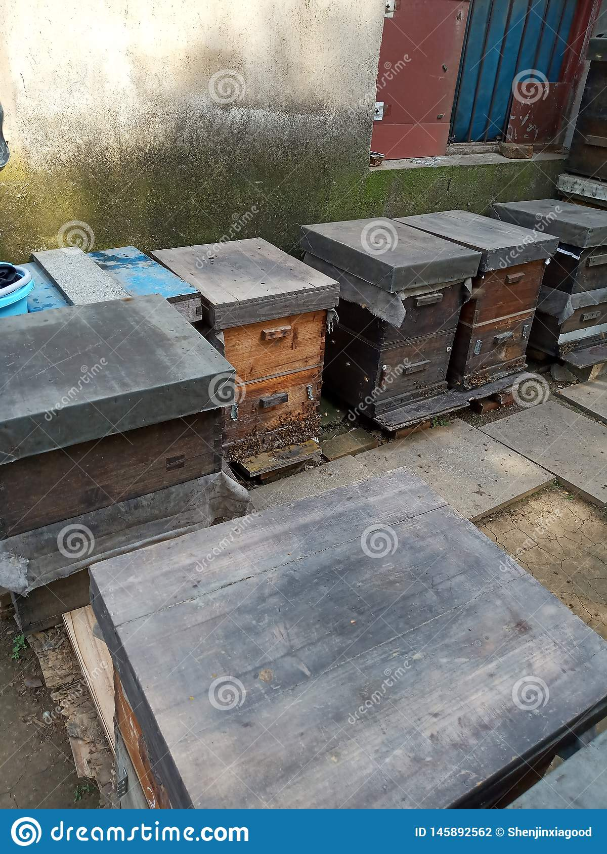 A hive,Wild, farm beekeeping sites
