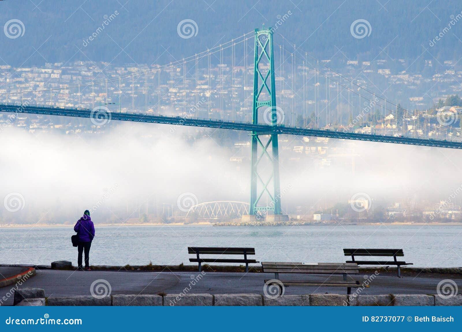 Hiver brumeux à Vancouver, Colombie-Britannique avec le pont en porte de lions