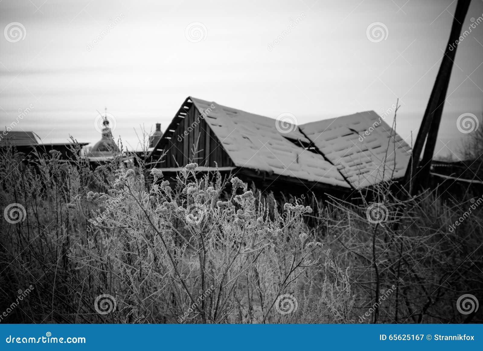 Hiver de Milou dans le village russe toned