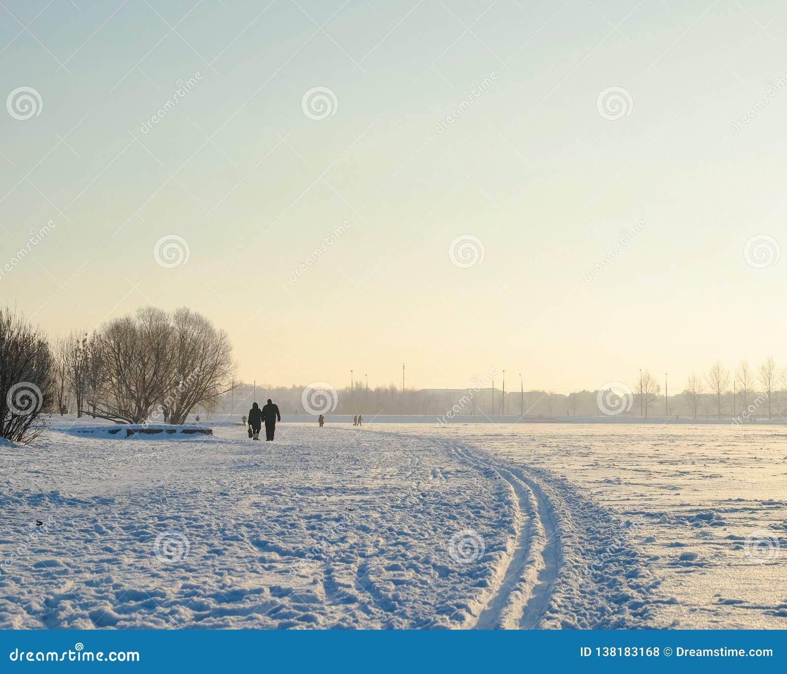 Hiver et couples de Butovo Moscou marchant en parc