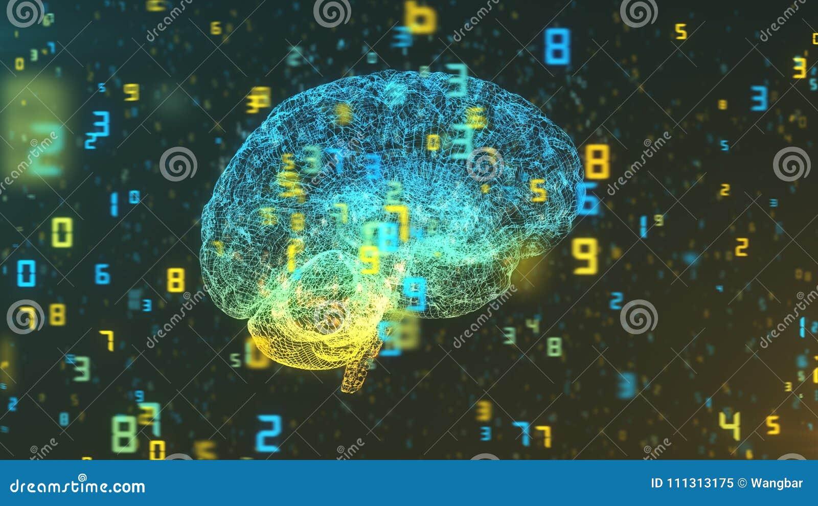 Hjärna och nummer - stor data och statistik - höger sikt