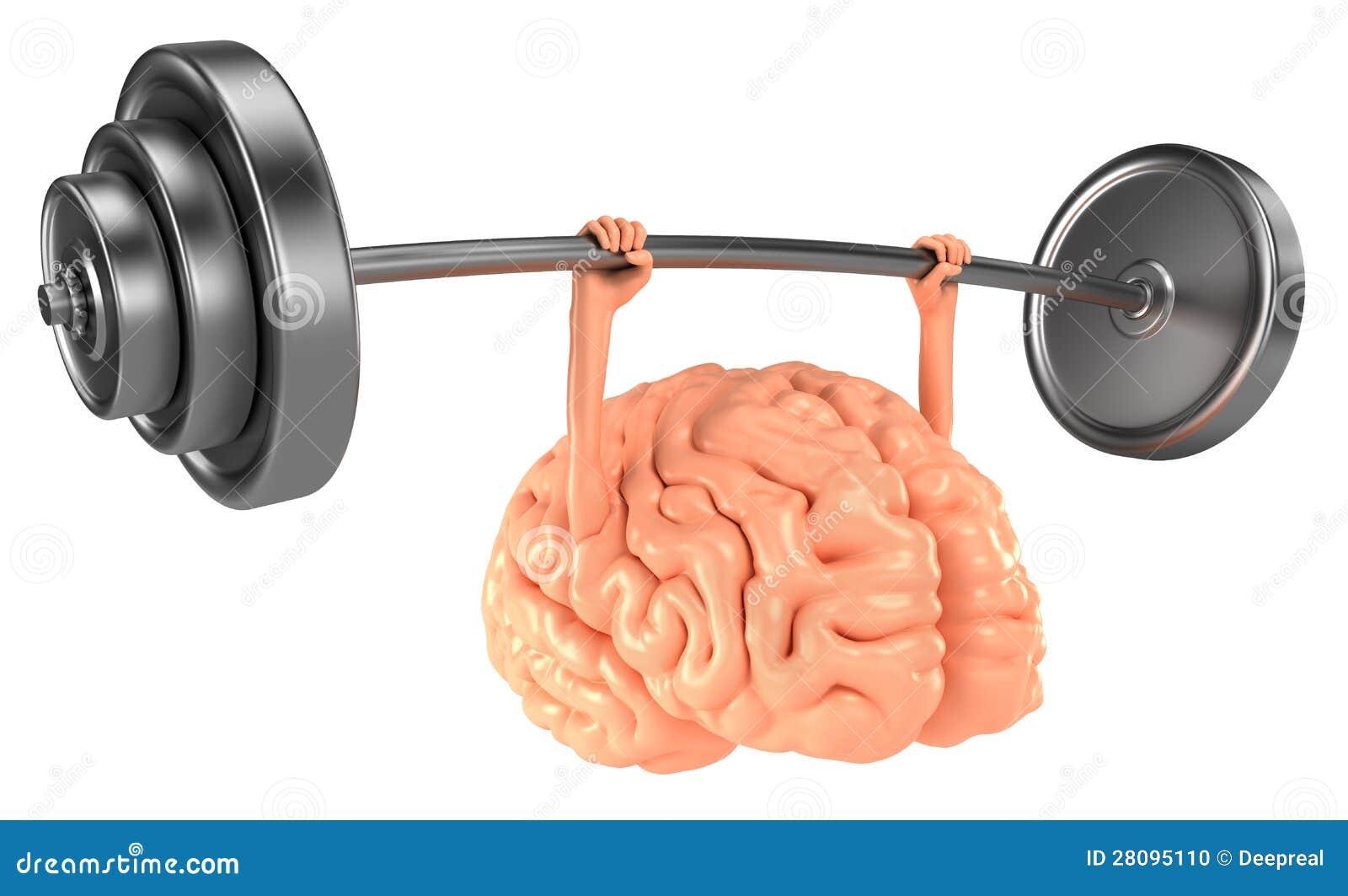 Hjärnan övar
