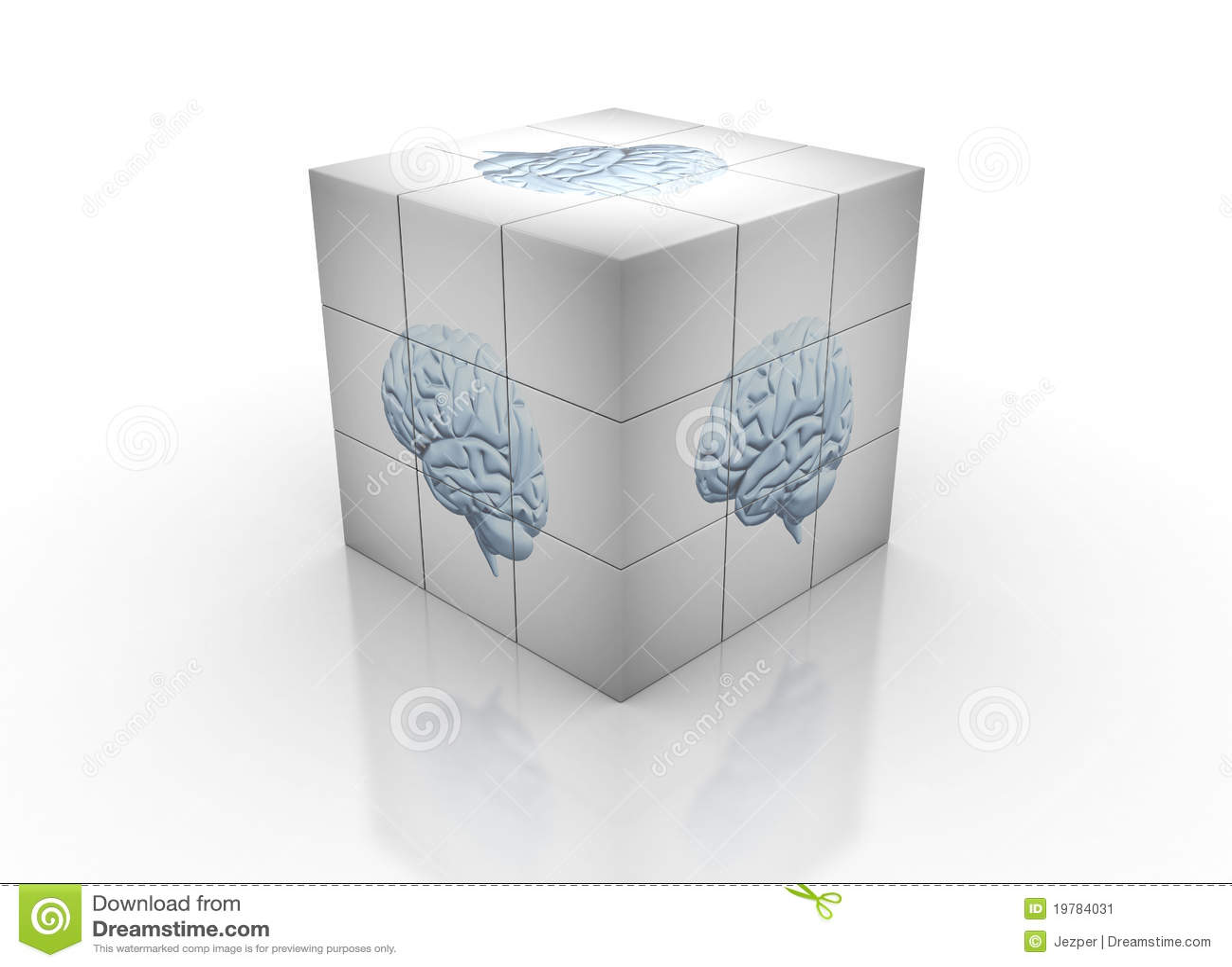 Hjärnpussel