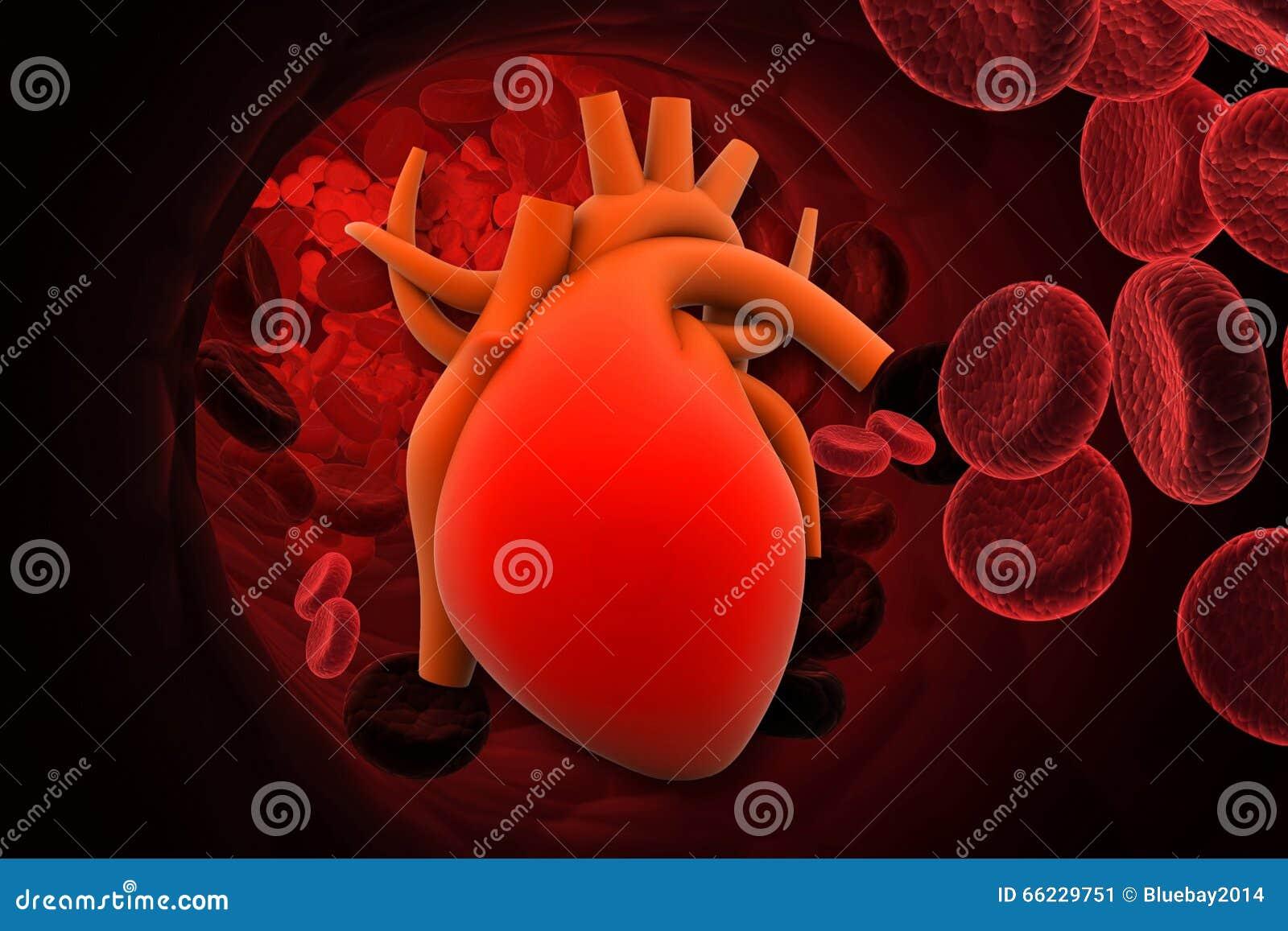 Hjärta med röda celler
