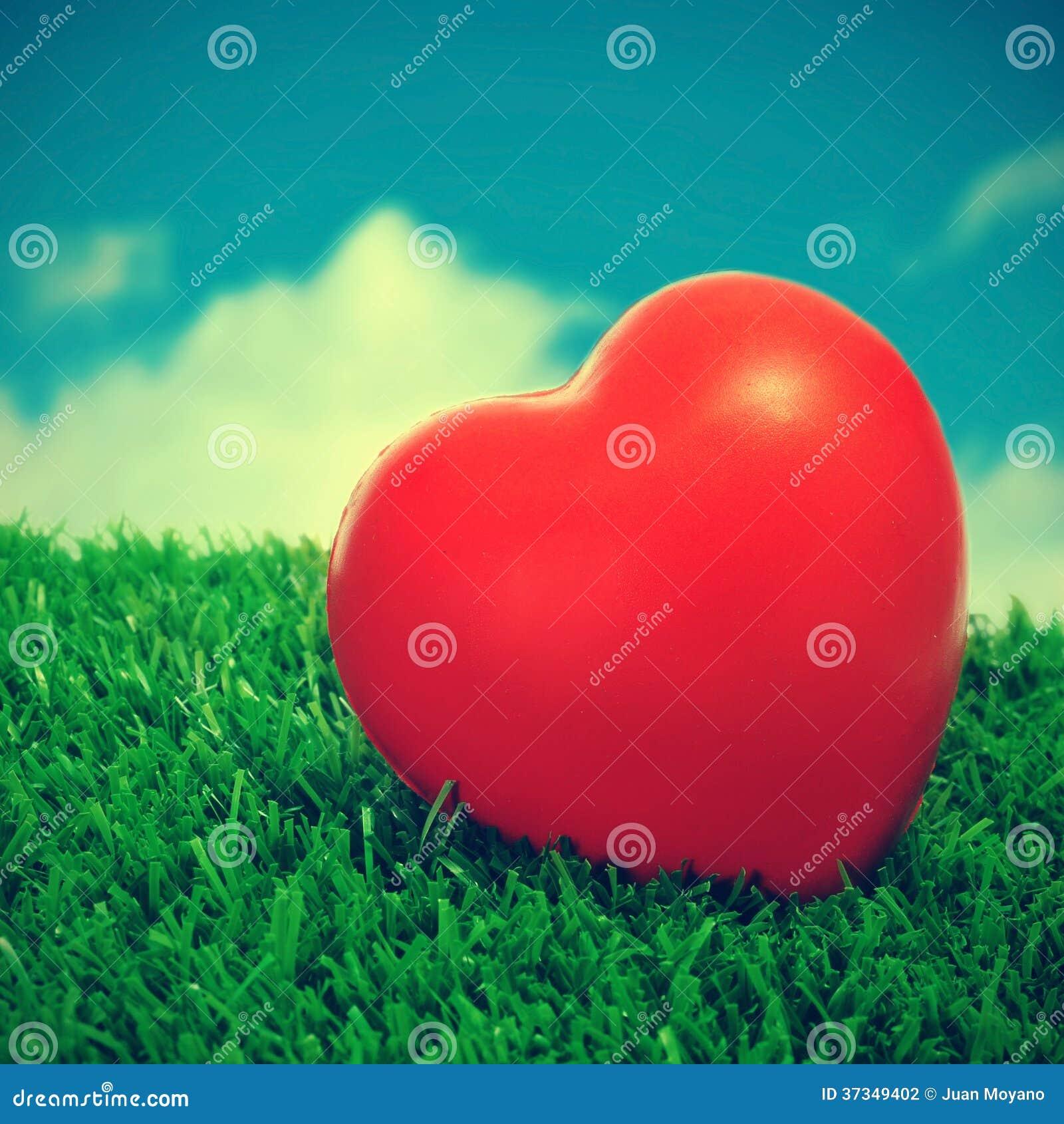 Hjärta på gräset