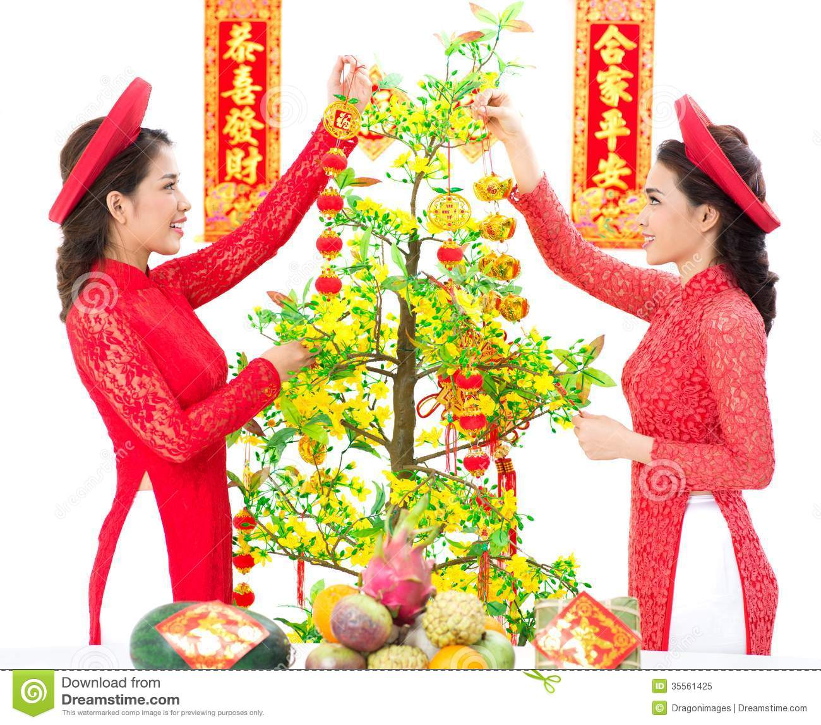 Hoa Mai Decoration stock image. Image of flower, asian ...