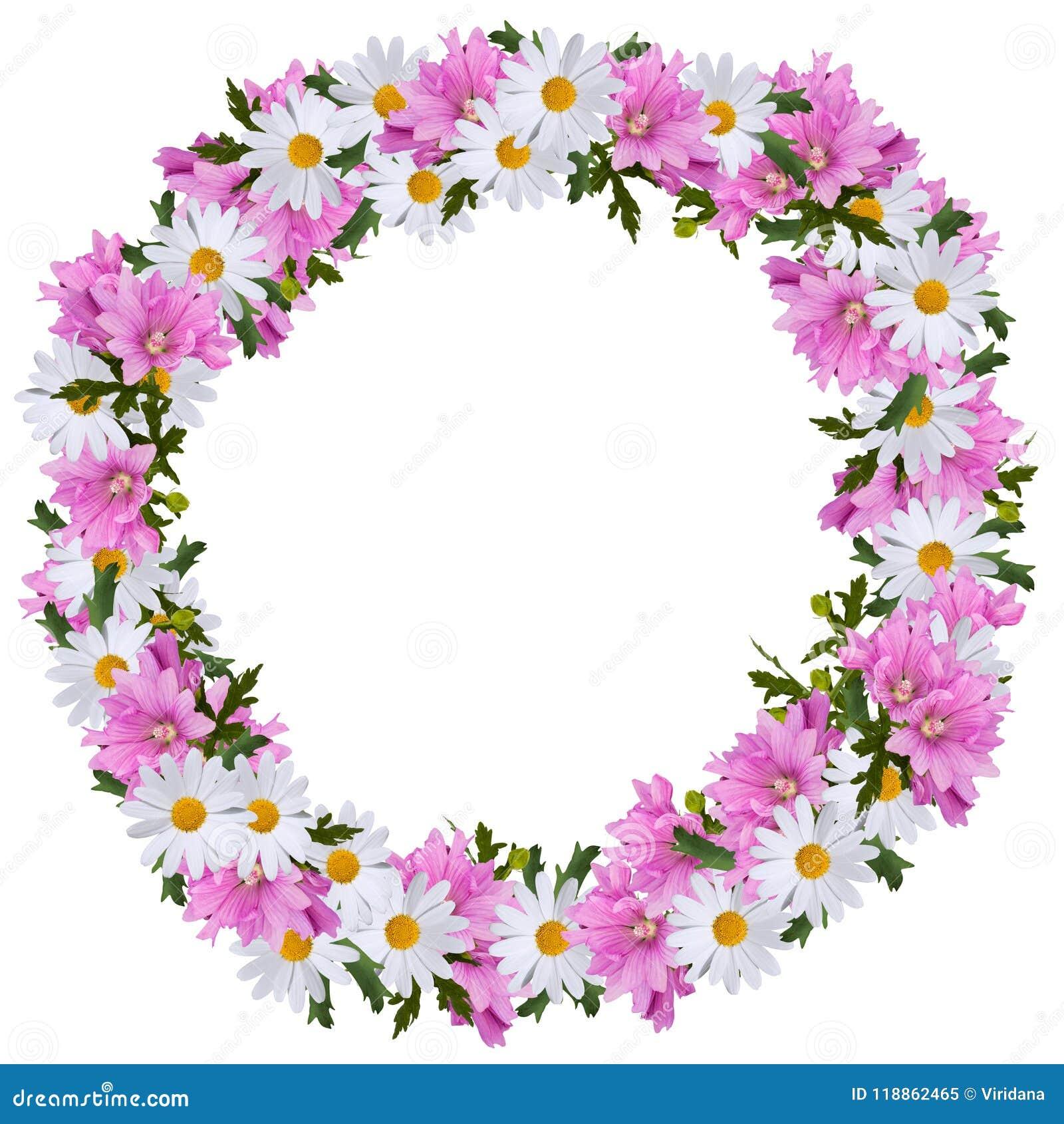 Hochsommerkranz von Gänseblümchen und von Malven