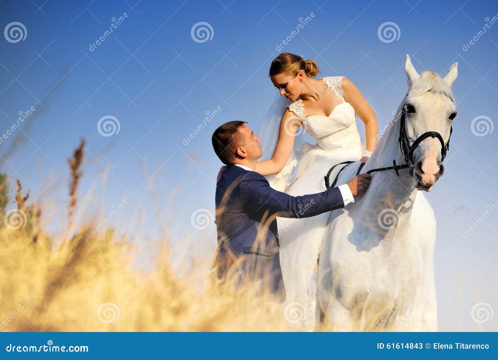 Hochzeit Braut und Bräutigam mit Schimmel