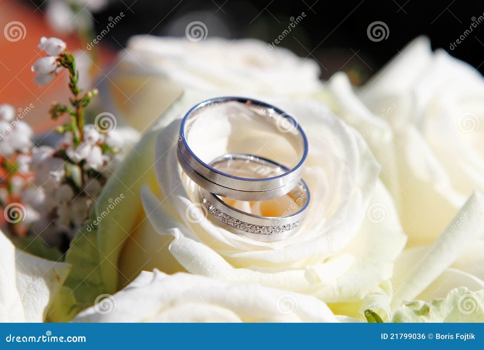 Hochzeits Ringe Mit Blumen Stockfoto Bild Von Bogen 21799036