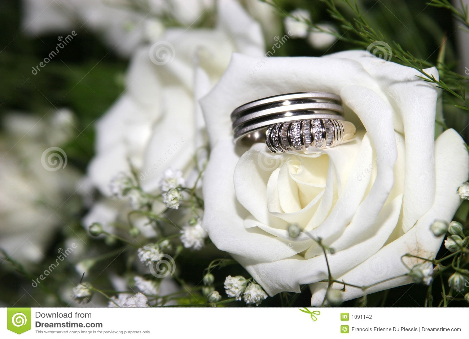 Hochzeitsringe in einer Rose