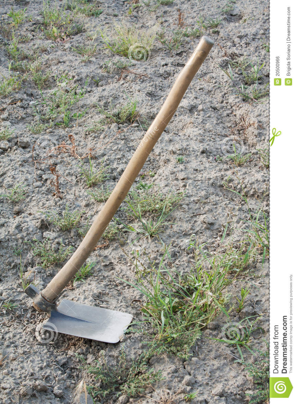 Hoe a garden tool stock photo image of blade garden for Picture of a garden hoe