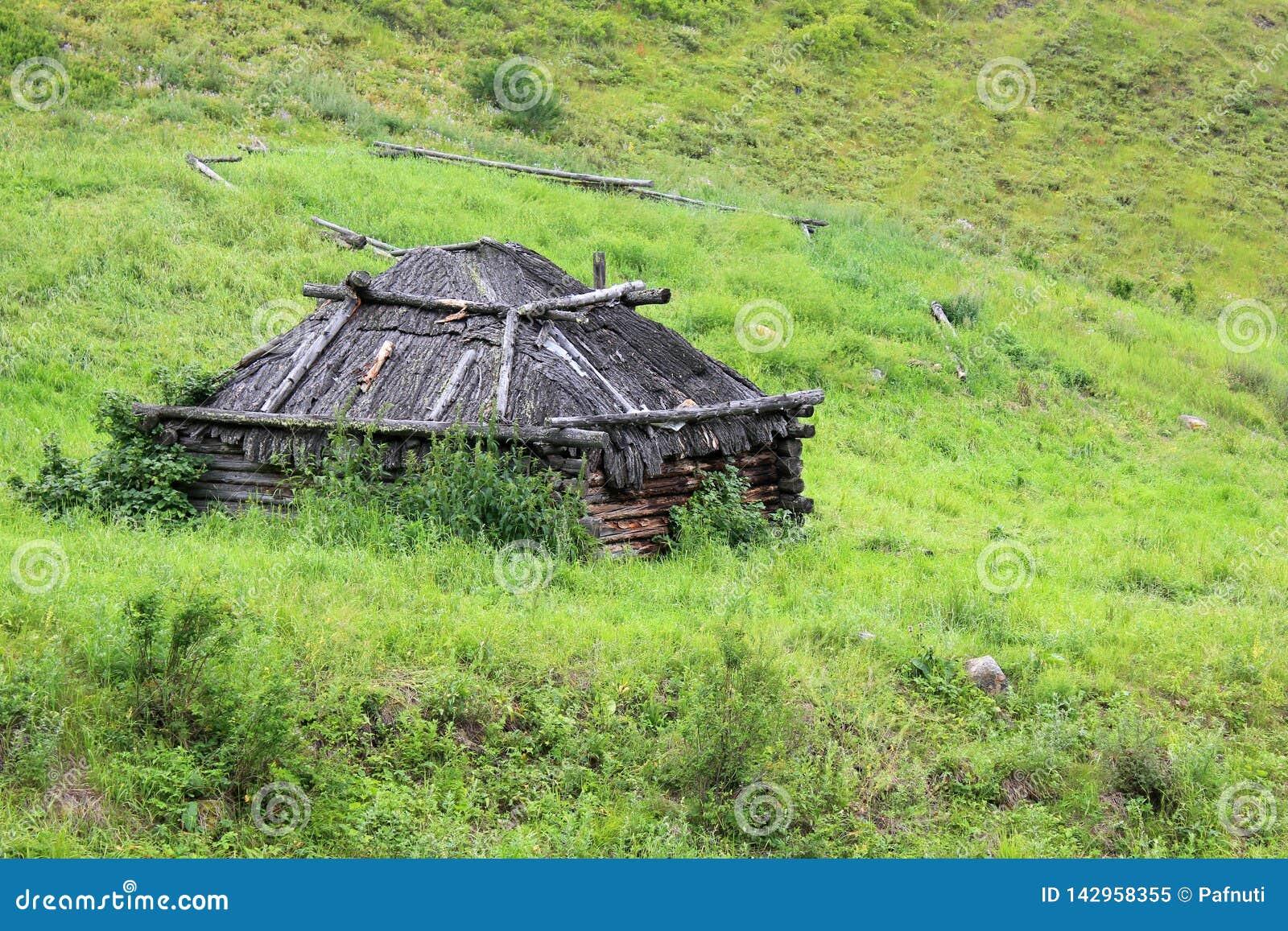 Hogar de Taditional de los cazadores de Altai en el prado