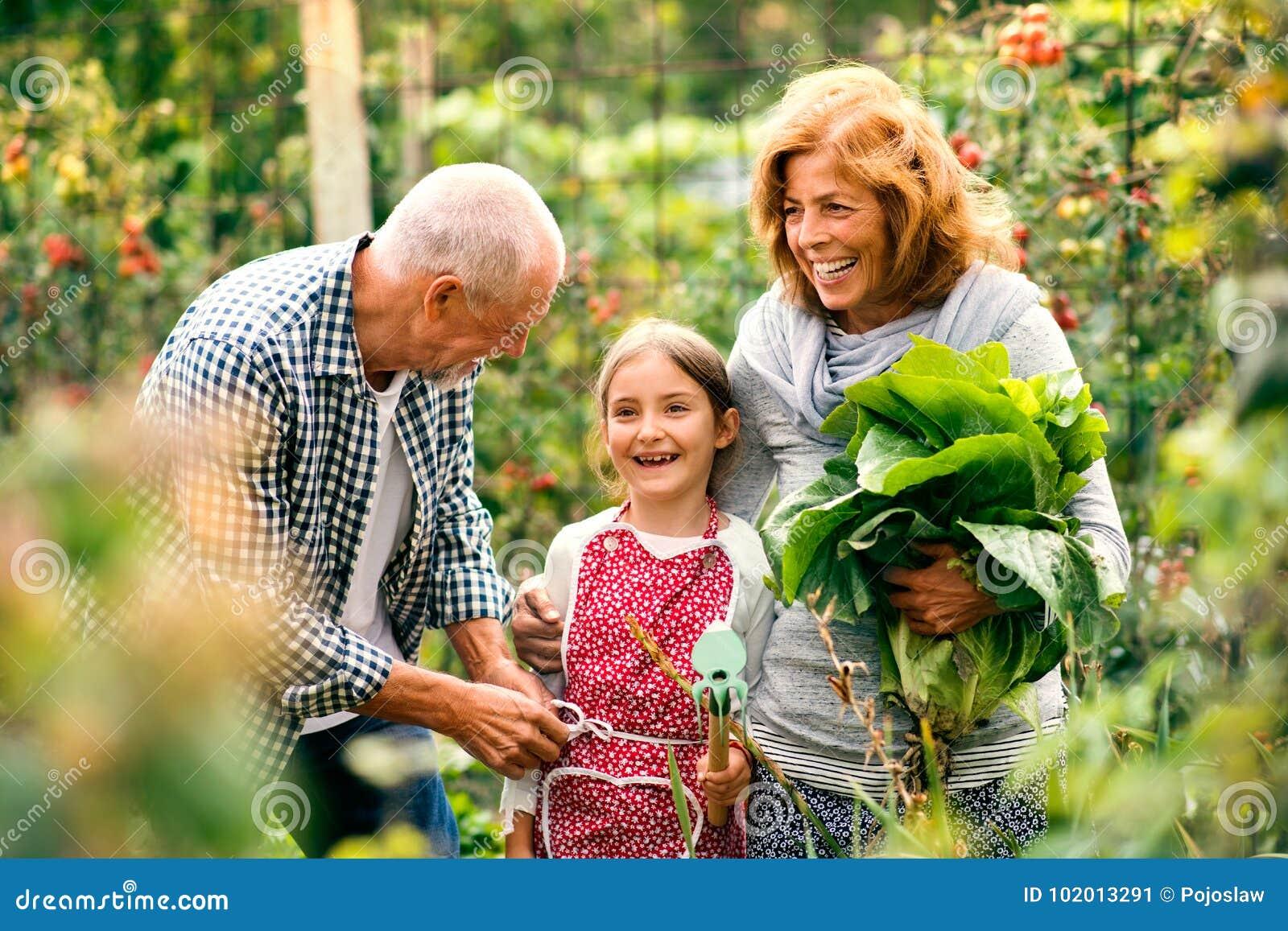 Hoger paar die met grandaughter in de binnenplaatstuin tuinieren