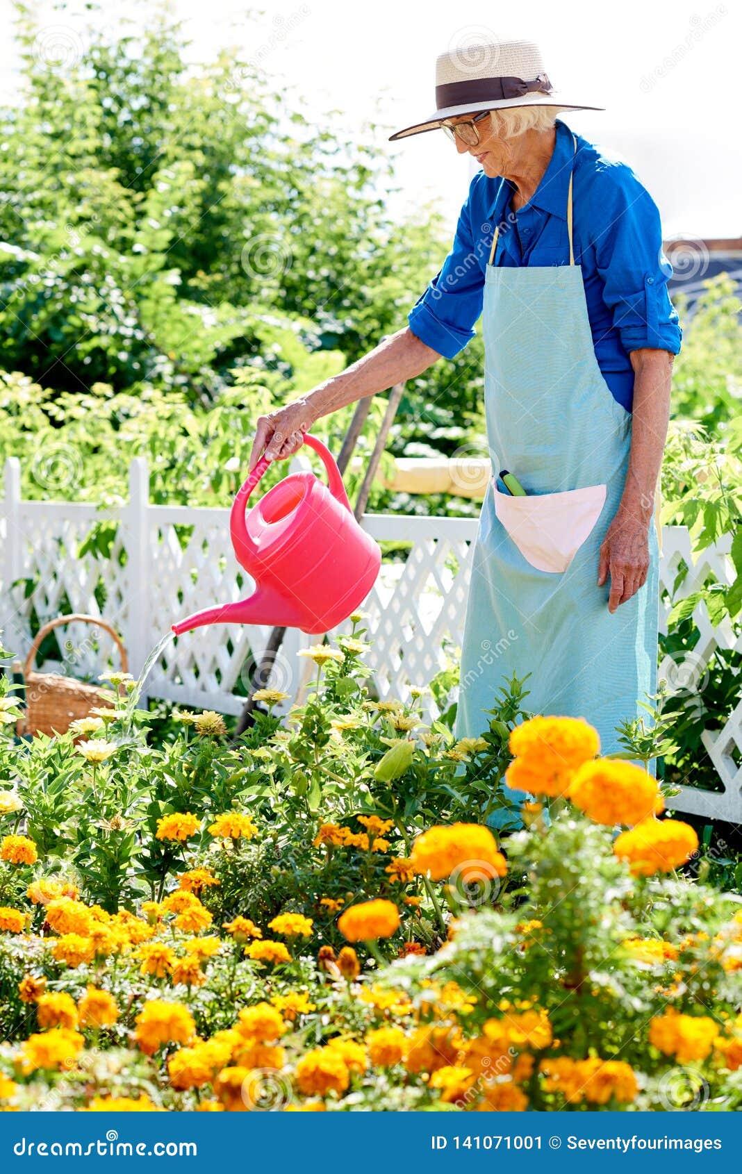 Hogere vrouw het water geven bloemen