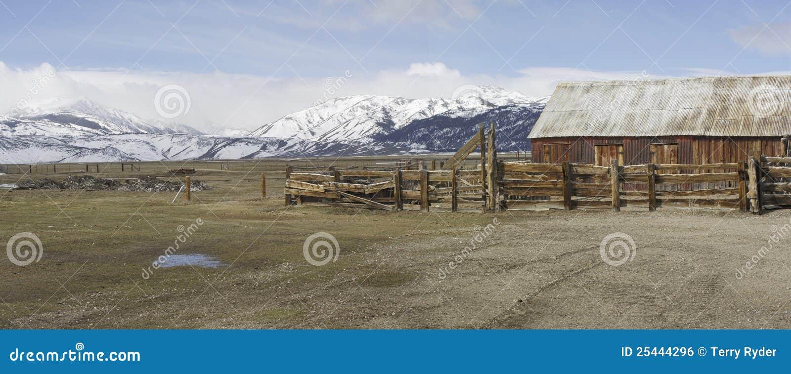 Hohe Grasland-Vieh-Ranch