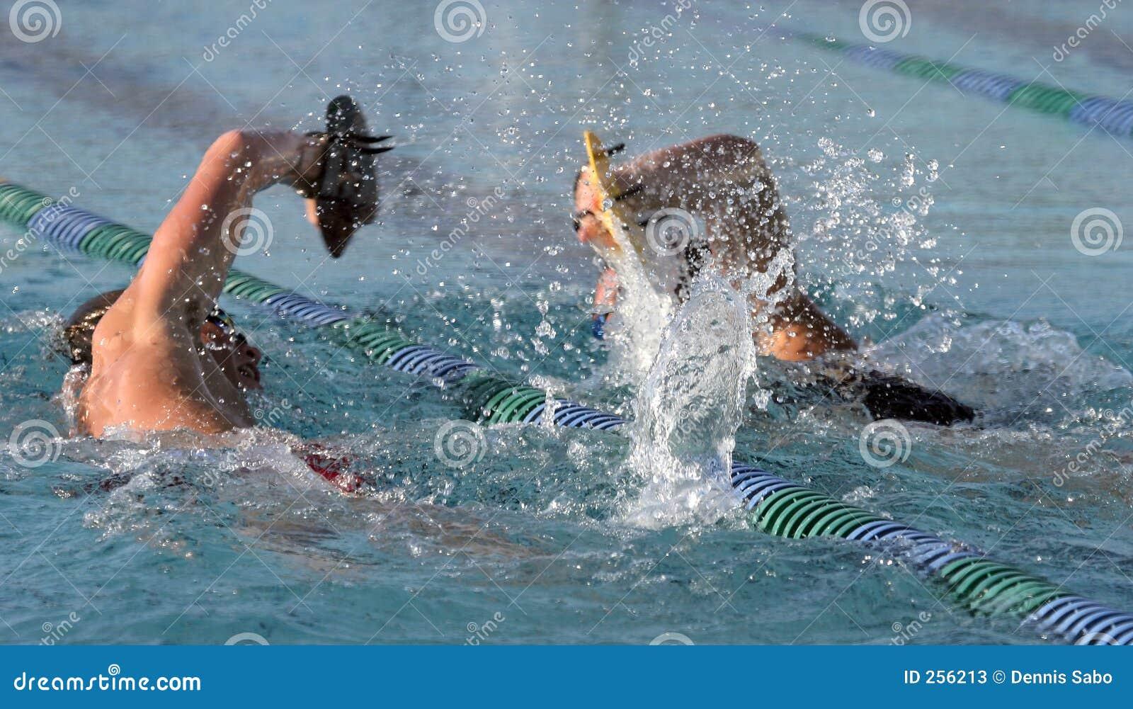 Hohes schoo; L Schwimmer
