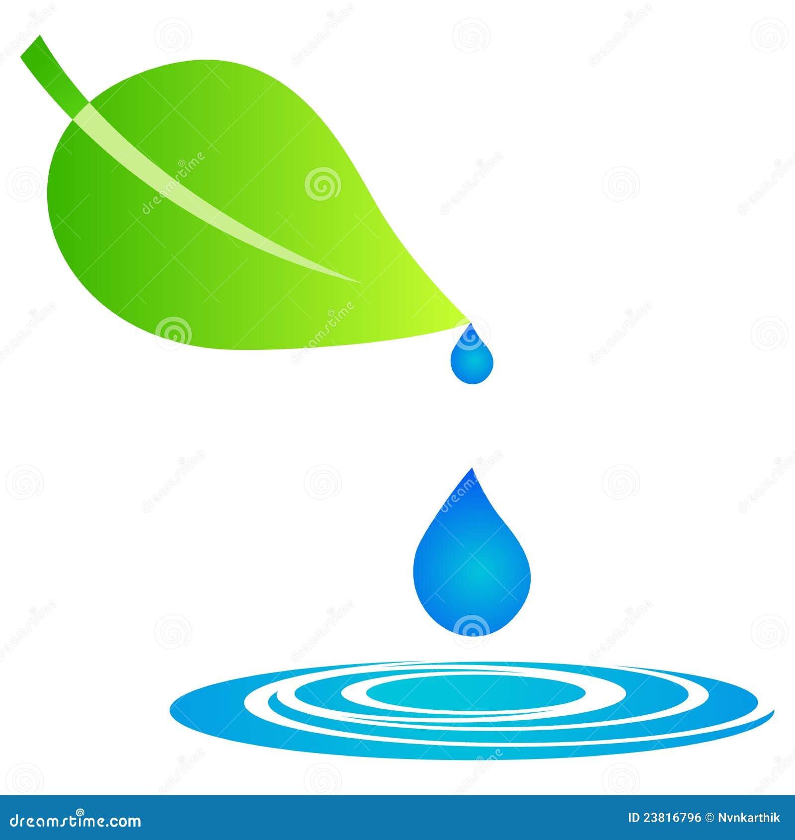 Hoja con gotas del agua