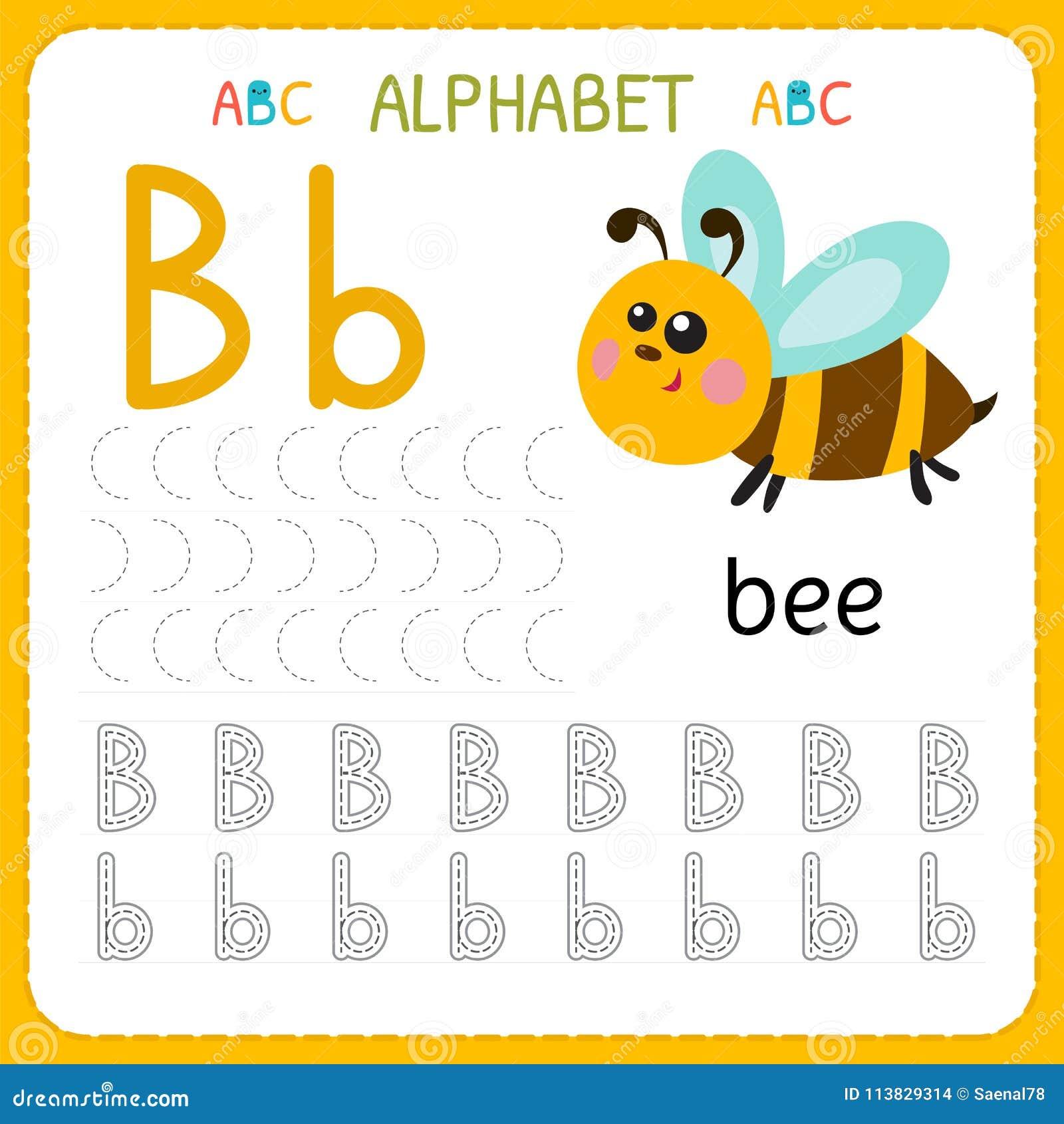 Hoja de trabajo de trazado del alfabeto para el preescolar y la guardería Letra B de la práctica de la escritura Ejercicios para