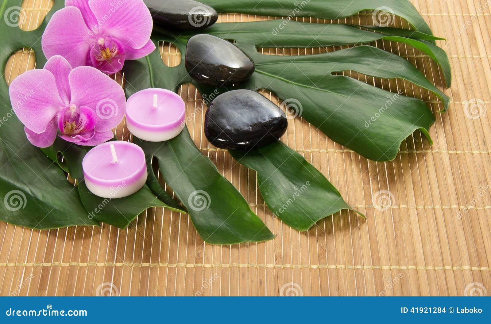 Hoja del monstera, de la orquídea, de la vela y de piedras