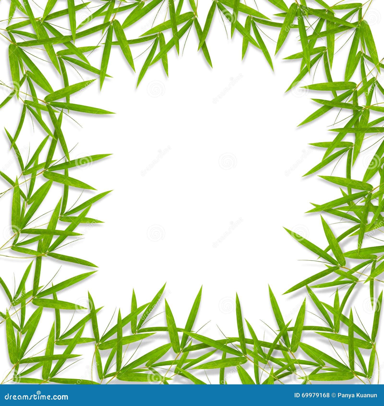 Hoja y fondo de bamb del marco con el lugar en blanco - Marcos para plantas ...