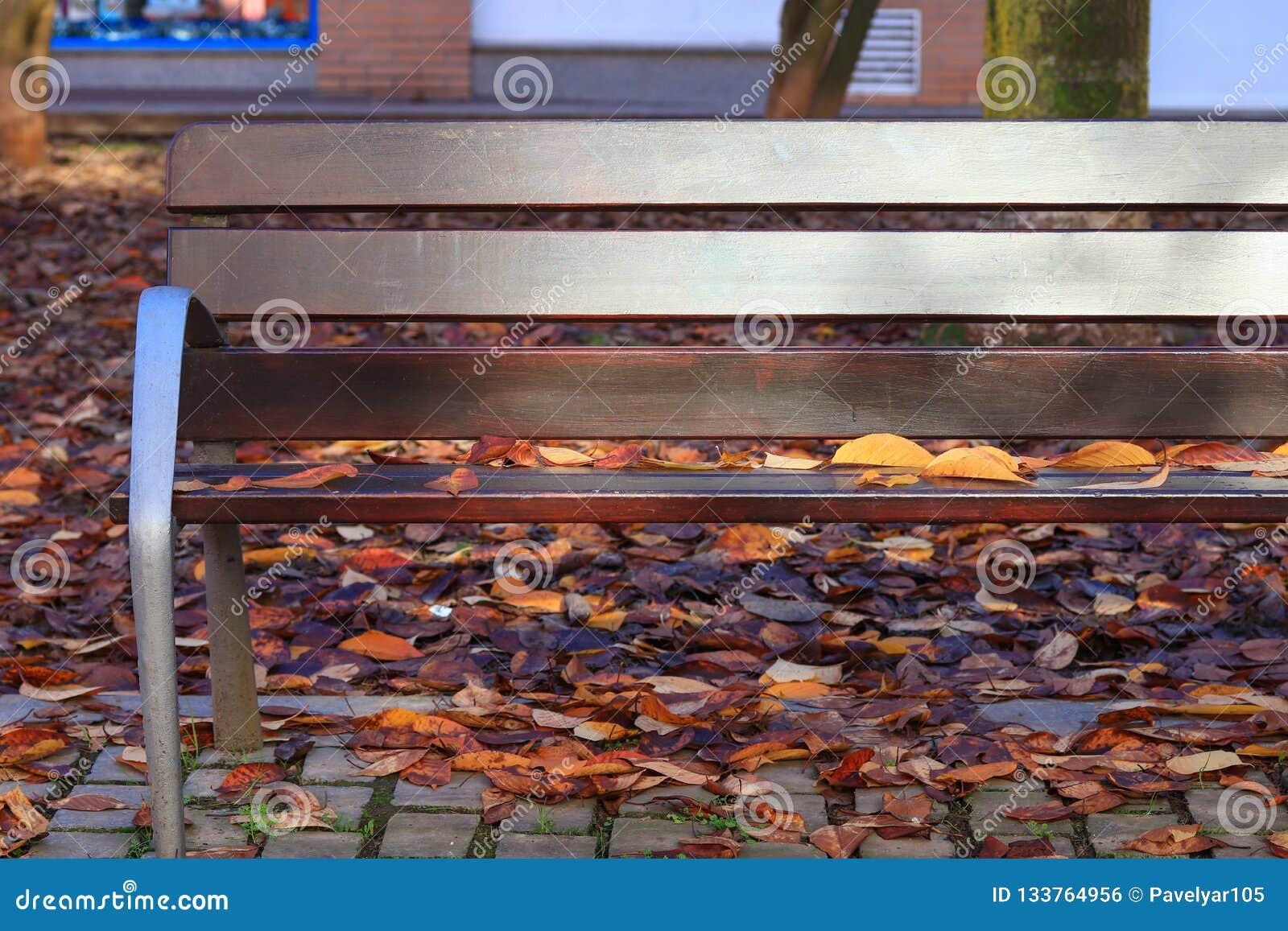 Hojas de otoño en un banco de parque