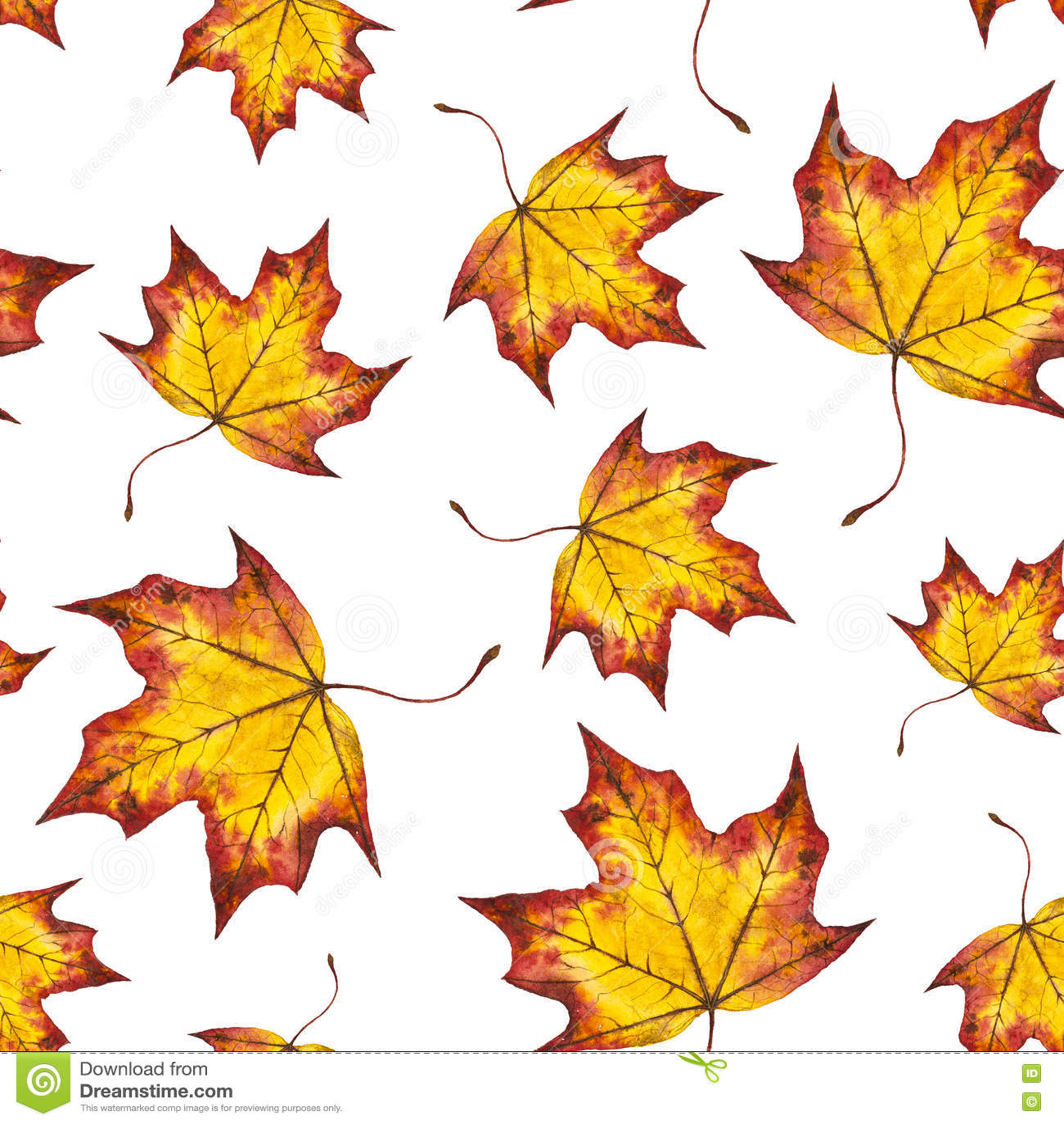 Hojas de otoño inconsútiles del modelo de la acuarela del arce