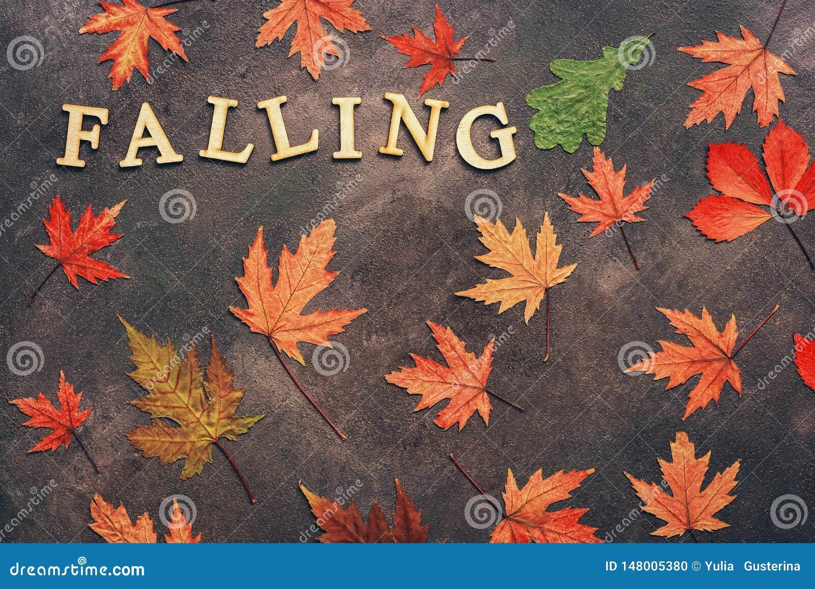 Hojas de otoño secas coloreadas en un fondo oscuro y la palabra de la letra-ca3ida de madera Disposici?n creativa del oto?o Endec