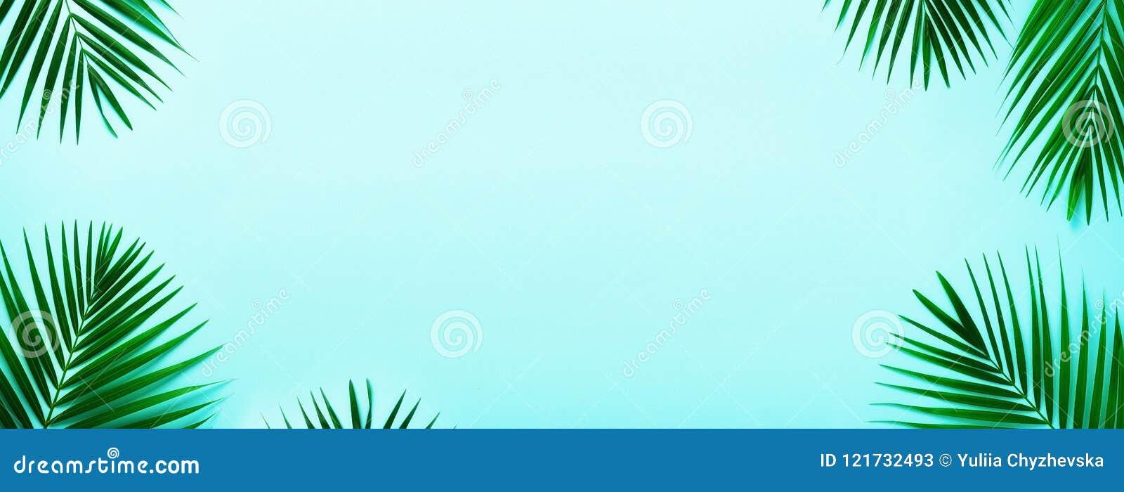 Hojas De Palma Tropicales En Fondo En Colores Pastel De La Turquesa ...