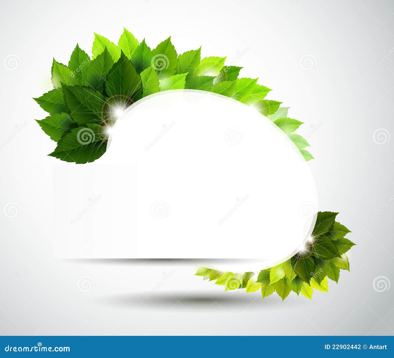 Hojas del verde