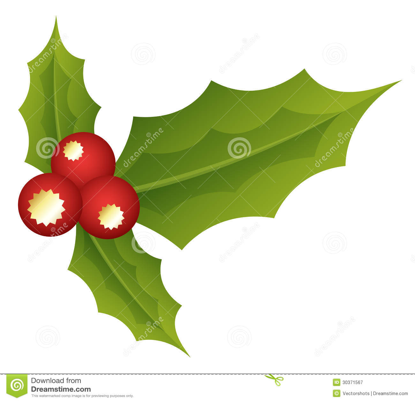 hojas santas ejemplo del vector de la navidad fotograf a On hojas de navidad