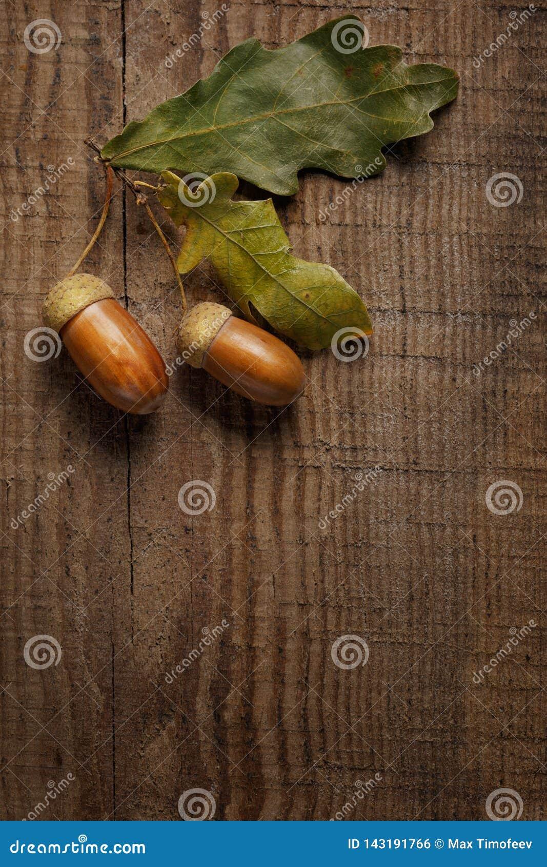 Hojas y bellota secas en fondo de madera