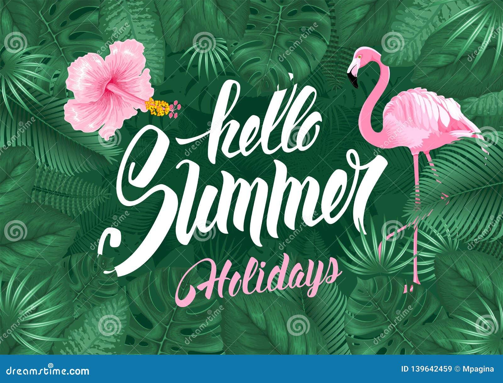 Hola diseño tropical del marco del verano