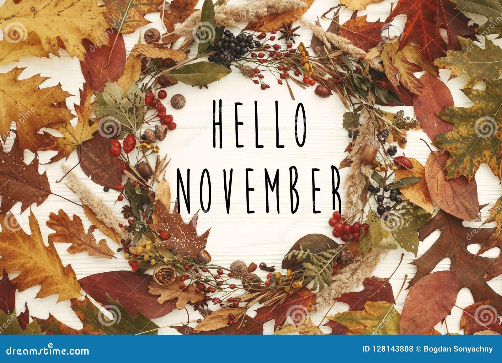 Hola texto de noviembre en endecha del plano de la guirnalda del otoño Hojas de la caída en el ci
