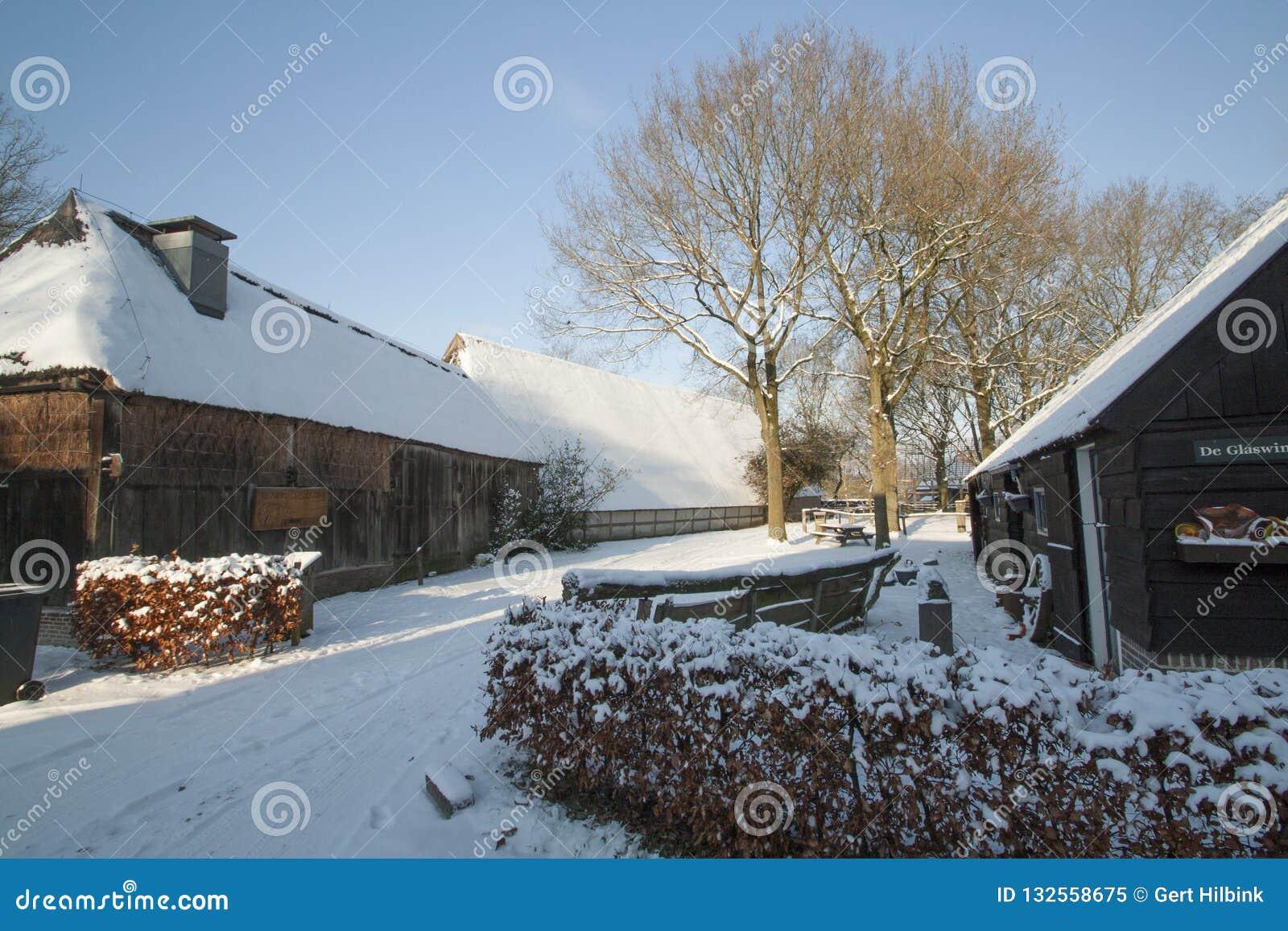Holandie, krajobrazy i młyny w wintertime,