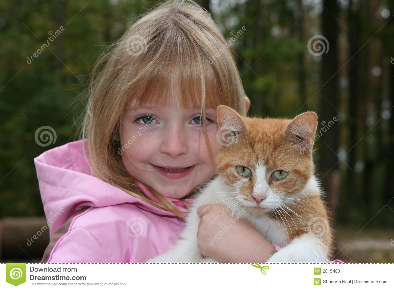 Holding A Cat Stock Photo Image 2015480