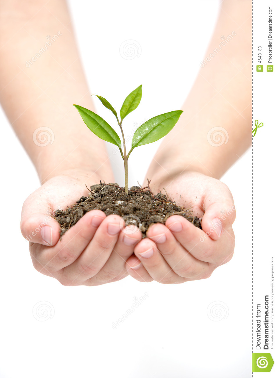 research paper on biofertilizer Biofertilizer the neutrality of this article is disputed relevant discussion may be found on the talk page please do not remove this message until conditions to.