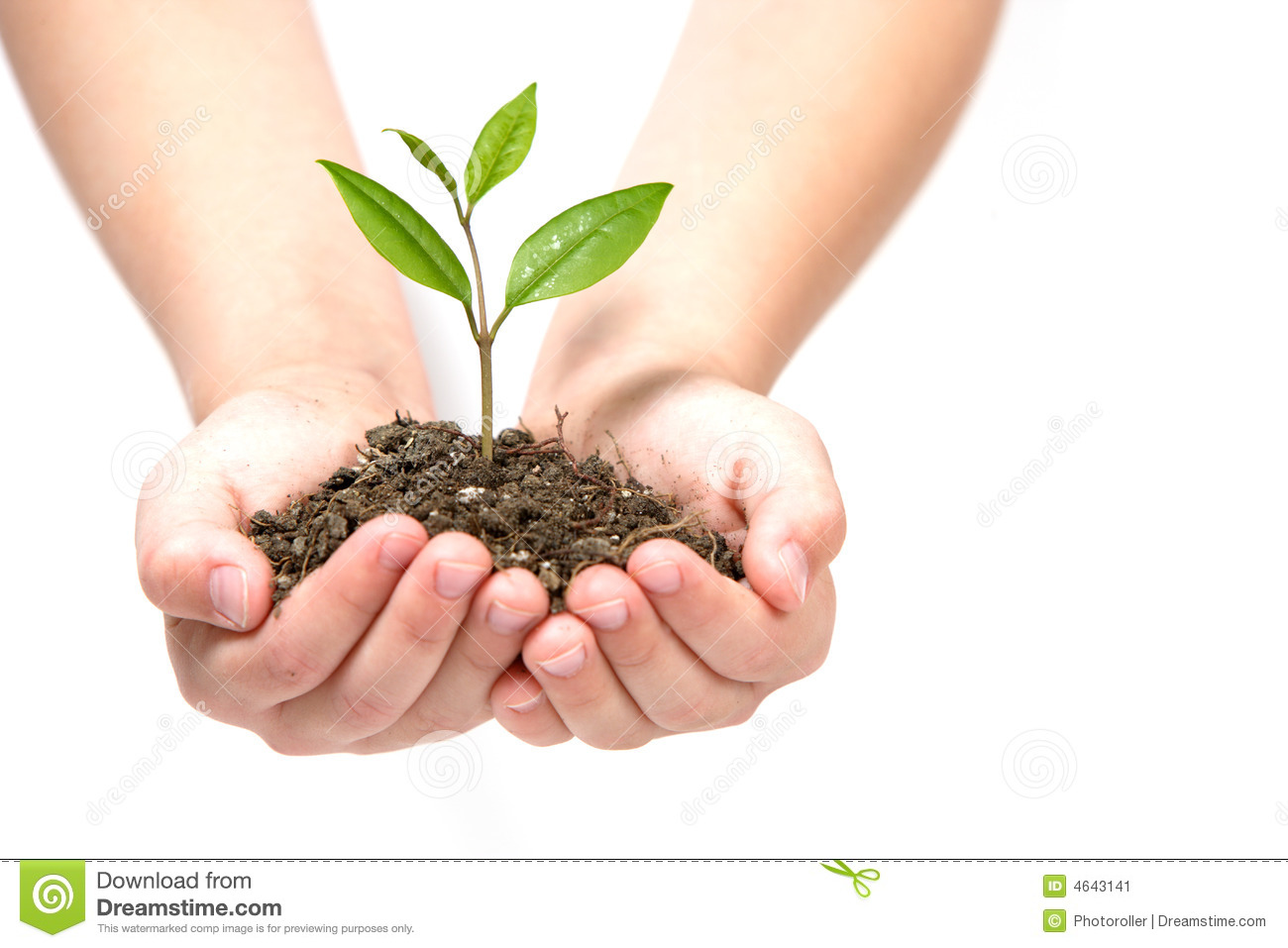 Holding small plant