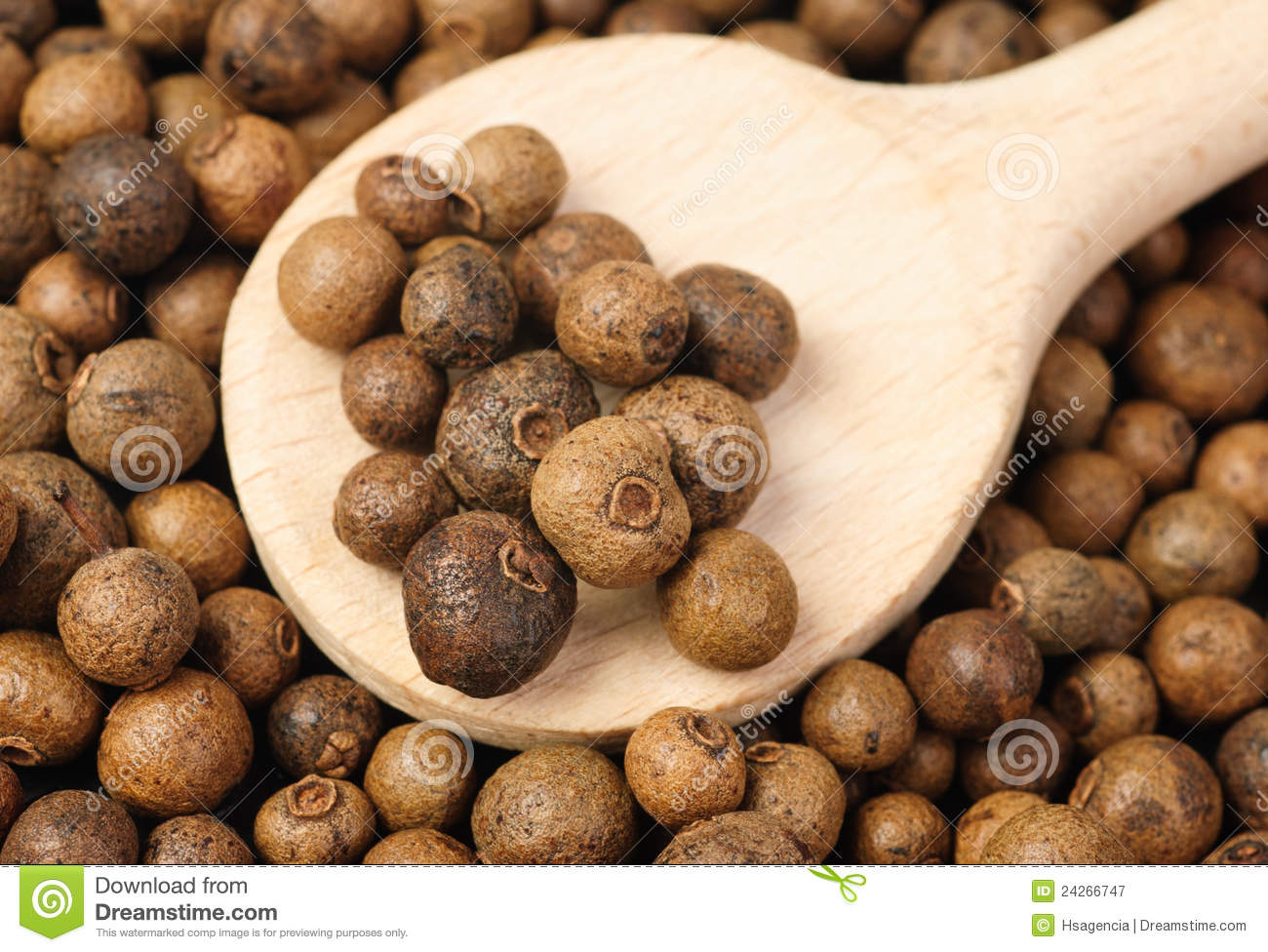 Hole allspice(jamaica pepper) with wooden spoon