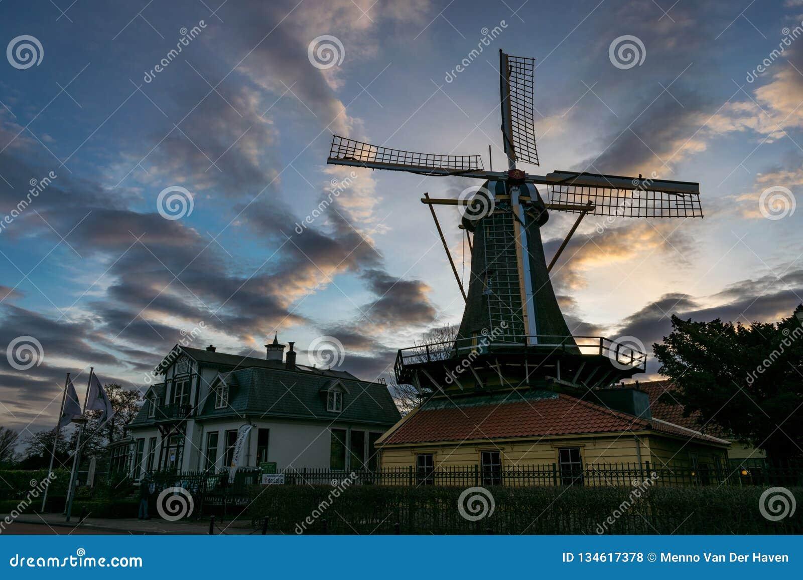 Holenderski wiatraczek blisko Jeziornych «Kralingse Plas w Rotterdam holandie