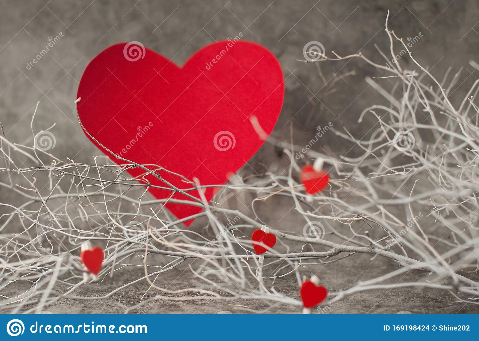 Holiday Background For Valentine S Day On A Gray Cement Background With White Painted Branches And A Sheet Of Paper For Text Stock Photo Image Of Decoration Branch 169198424