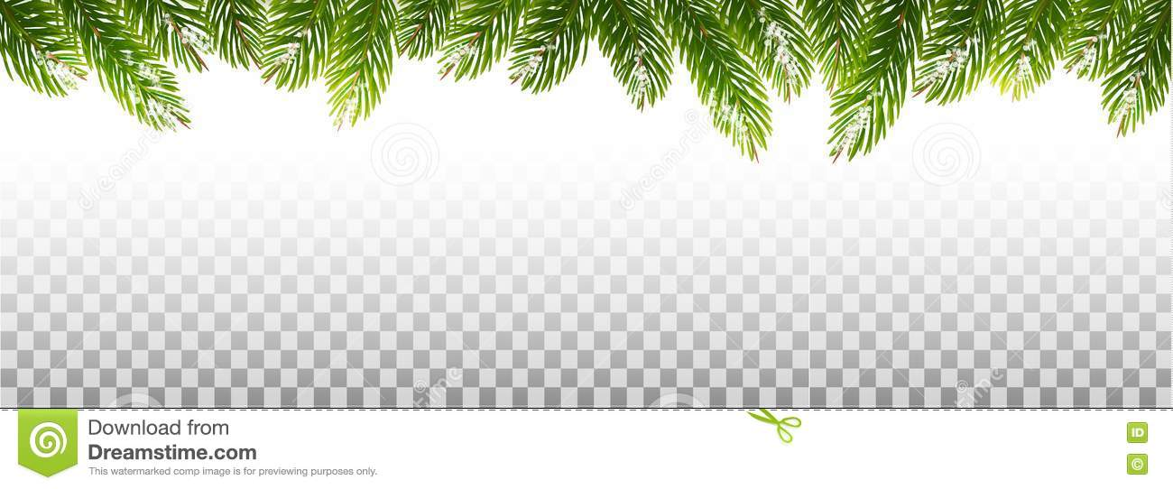 Christmas Branch Vector.Holiday Christmas Frame With Green Tree Branches Stock