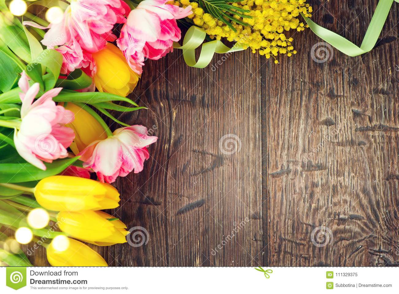 Holiday spring background. Mother`s Day holiday wooden backdrop frame decorated with colorful tulip flowers and mimosa flower