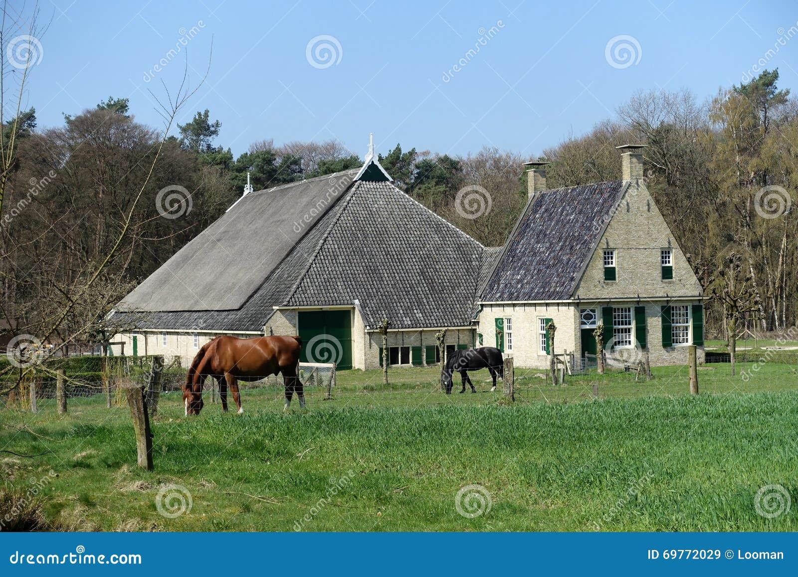 Holländskt gammalt lantgårdhus