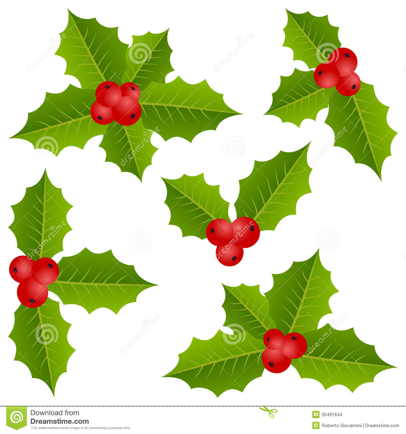 Holly berry christmas collection stock vector image for Holl image