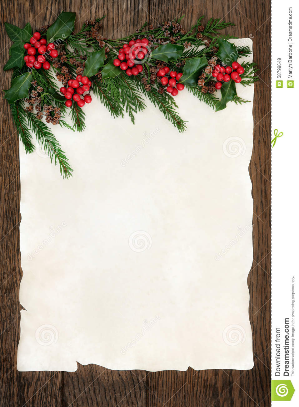 holly and fir border stock photo